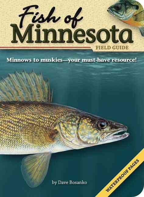 Fish of Minnesota By Bosanko, Dave